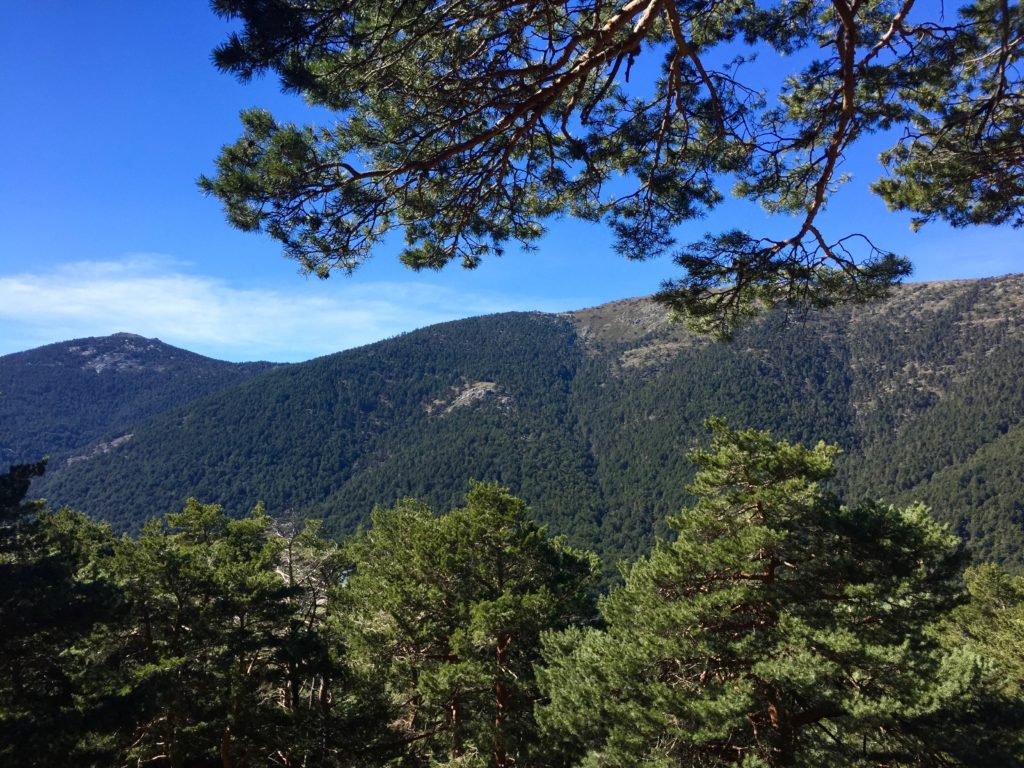 hiking sierra guadarrama