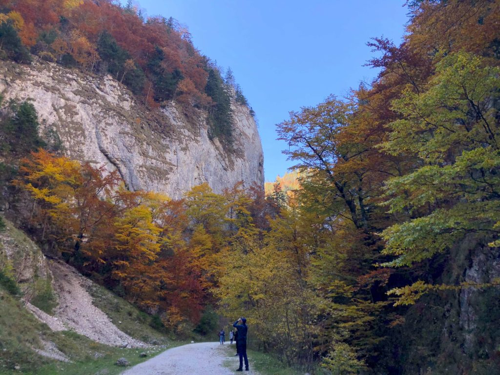 easy hike in Piatra Craiului National Park